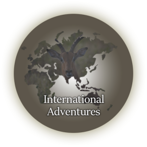 international-guided-hunts